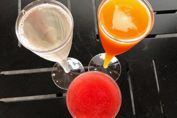 mimosa-2018-all.jpg