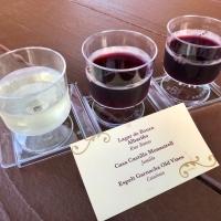 Spain 2018 - Wine Flight